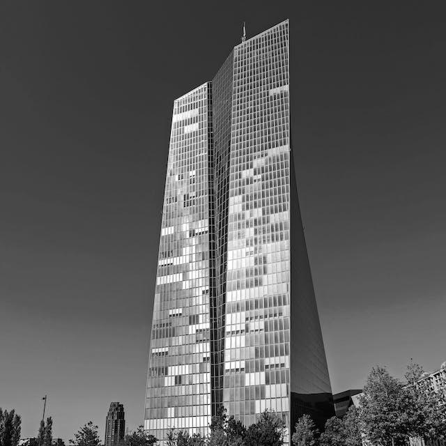 Het opkoopbeleid van de Europese Centrale Bank is niet meer effectief - Het Financieele Dagblad