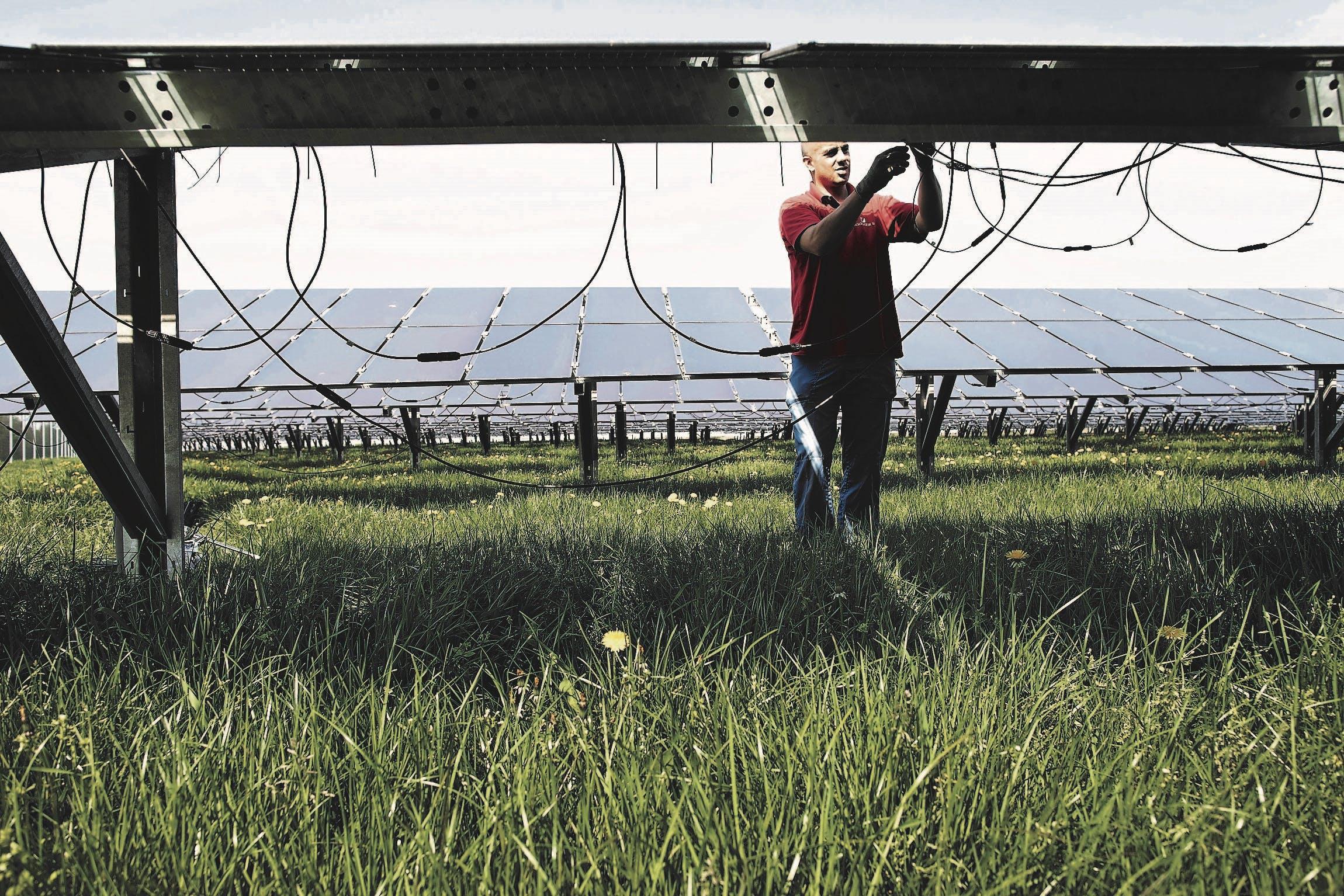 In Azewijn worden zonnepanelen geplaatst op het solarpark.