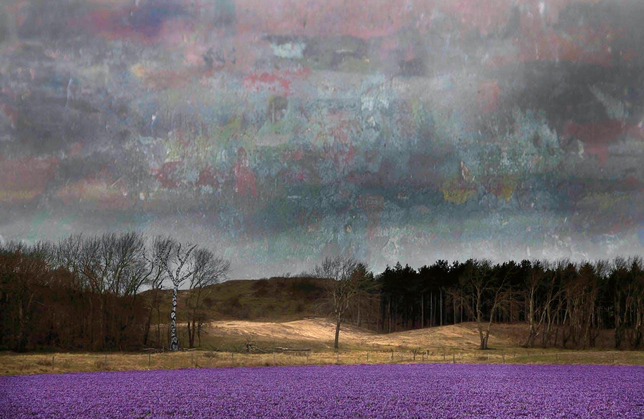 'Het ruist als sterrenstof als hemels geween'. De titels van de collages zijn dichtregels van Lucebert.