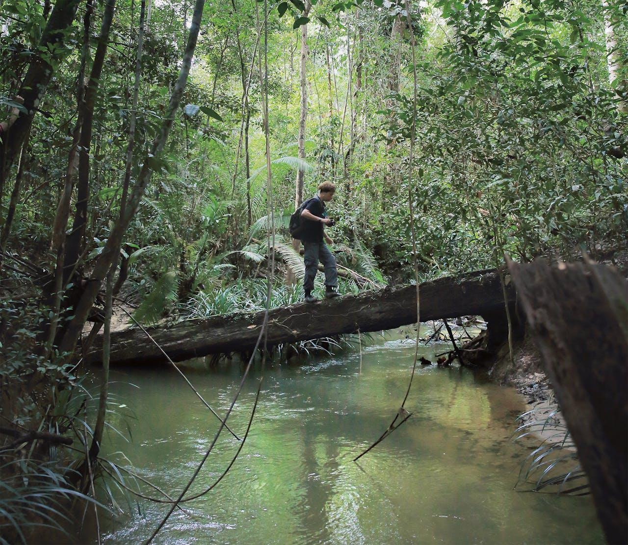 Gabriella Fredriksson aan het werk op Oost- Kalimantan. (Foto: Rocky Paolarossi)