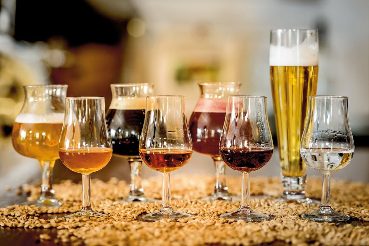 Distilleerderij de Pronckheer (Foto Wim Lancer)