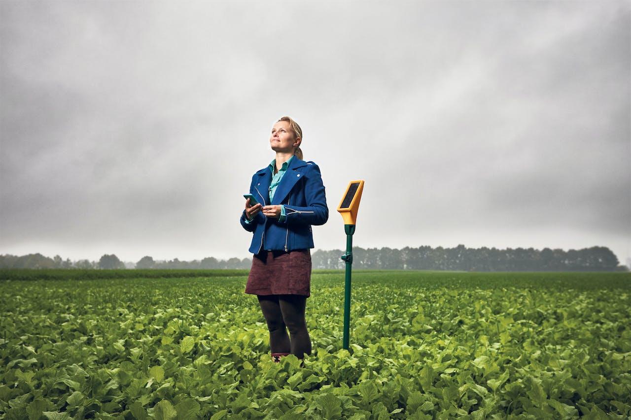 Janneke Hadders van Dacom bij een landbouwsensor waarmee boeren hun gewassen in de gaten kunnen houden.