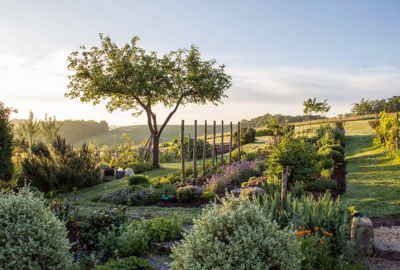 Uitzicht over de groentetuin bij de boerderij in Frankrijk.
