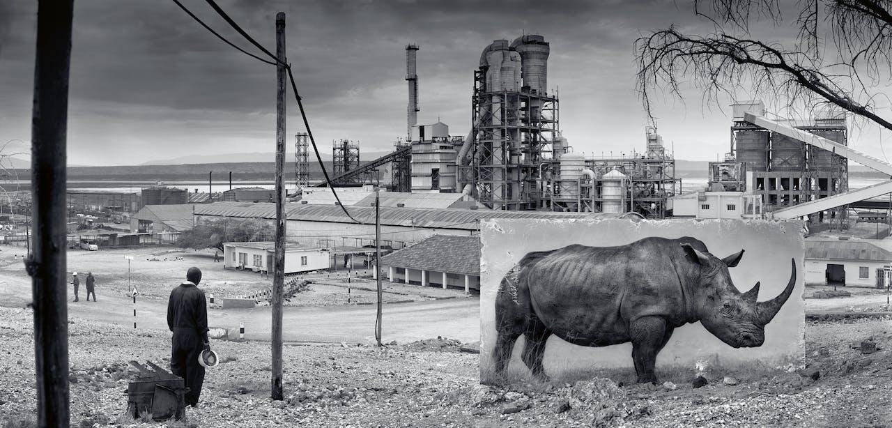 'Fabriek met neushoorn', 2014.