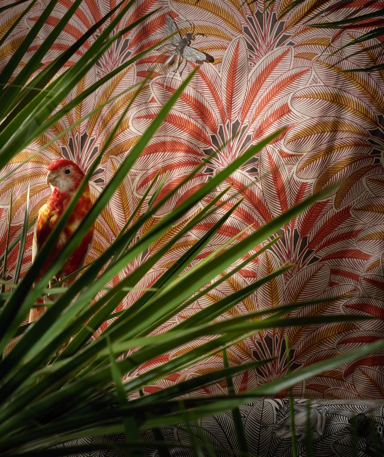 Oranje behang 'Brazilia', € 156 p/rol, Nobilis via Wilhelmine van Aerssen; zwart-wit printbehang 'Brazilia', €156 p/rol, Nobilis via Wilhelmine van Aerssen; parkiet, €225, Luxury by Nature; plant chamaerops humilis, mooiwatplantendoen.nl.