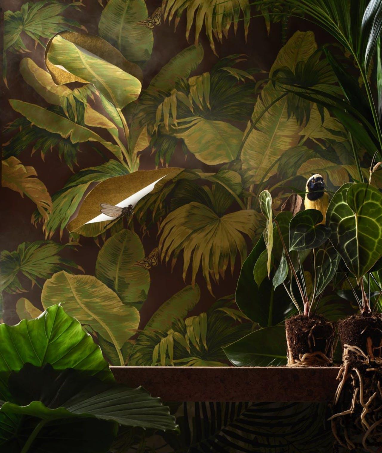 Behang 'Bananier', €391, Pierre Frey via Luxury By Nature; stof achter uitsnedes 'Cheviot', €85, p/m, Designers Guild via Wilhelmine van Aerssen; kurken tafelblad 'Sinnerlig', €189, Ikea; plant links alocasia gageana, mooiwatplantendoen.nl; interieurstof onder tafelblad 'Manila', €78, Sanderson via Luxury By Nature; plantjes anthurium clarinervium en palmplant, mooiwatplantendoen.nl; groene tropische vogel, €245, Luxury by Nature