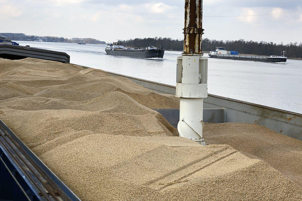 Houtpellets zijn inmiddels een veelgebruikte brandstof voor bijstook in kolencentrales. Daarnaast zijn nieuwe biomassacentrales gebouwd (of gepland) die in het gedrang komen bij het verminderen van de subsidies voor biomassa voor opwekken van energie.
