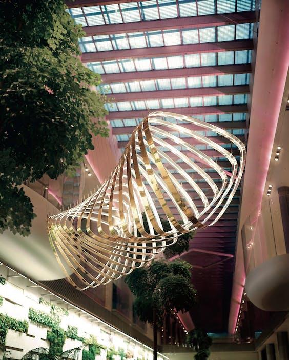 Een varentuin, een orchideeëntuin, een cactustuin en een zonnebloemtuin: Changi Airport in Singapore is een van de groenste luchthavens ter wereld.