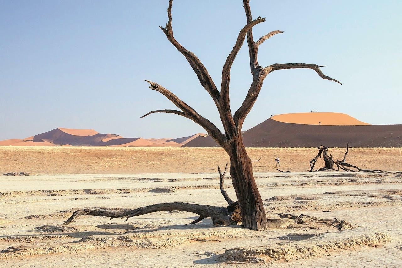 Sossusvlei, Namibië.